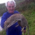 Un granjero encuentra y mata a una rata gigante