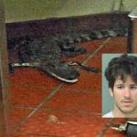 Detenido por lanzar un cocodrilo al interior de un restaurante