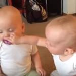La pelea de dos gemelas por un chupete se vuelve viral