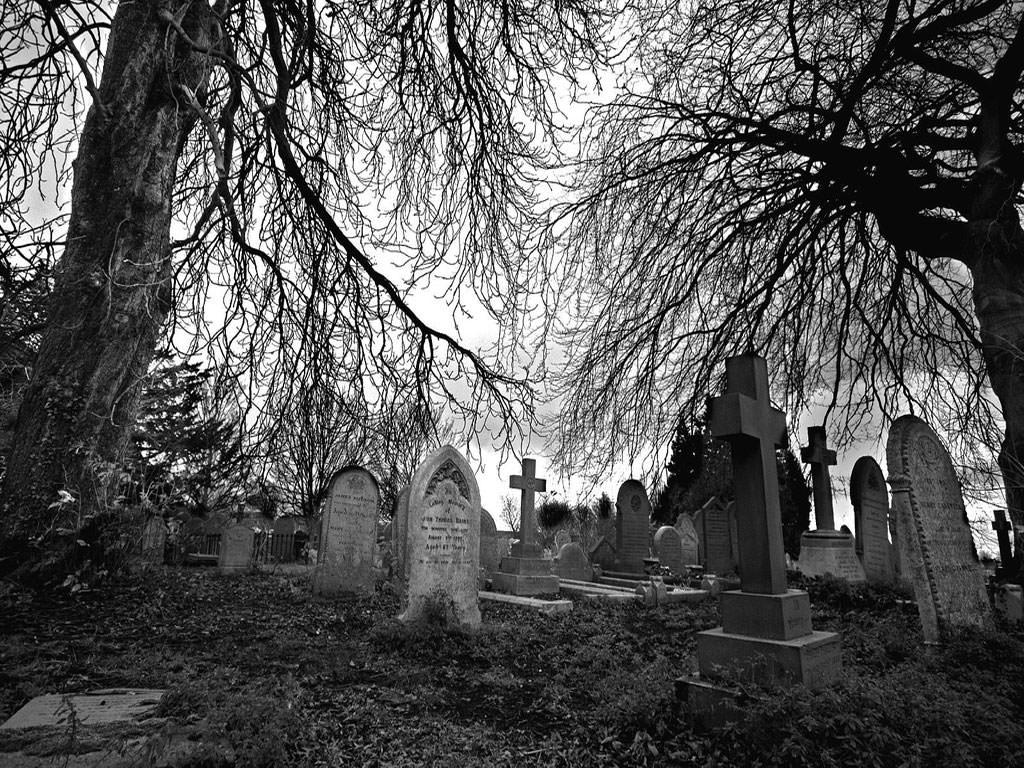 porno cementerio