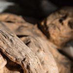 Una momia del siglo XVII pone en duda la historia de la viruela