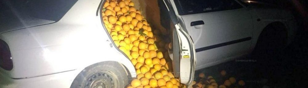 Las naranjas incautadas